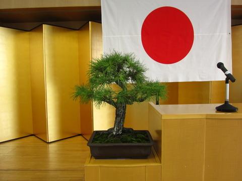 盆栽 003.JPGのサムネイル画像