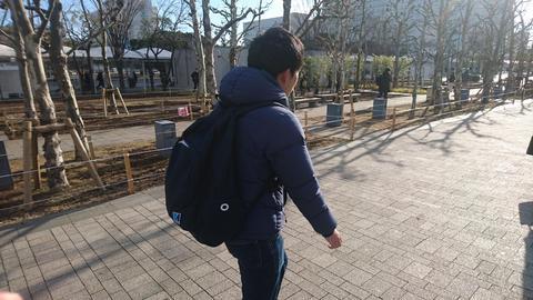 芝草1.JPG