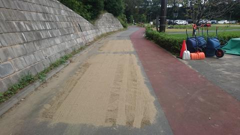 キヤノン砂1.JPG
