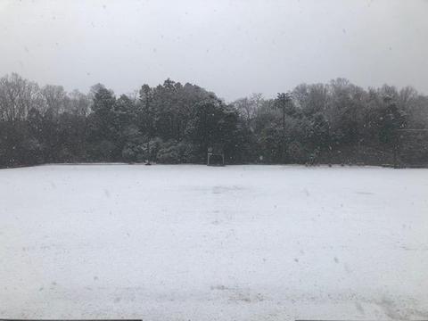 2021 1月雪全景.jpg