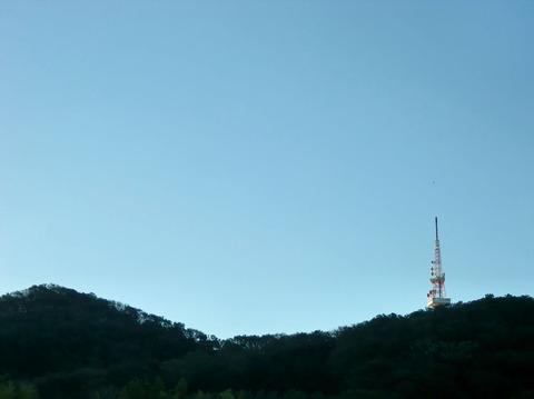 20131113.JPG