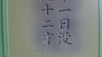 DSC_0791.JPG