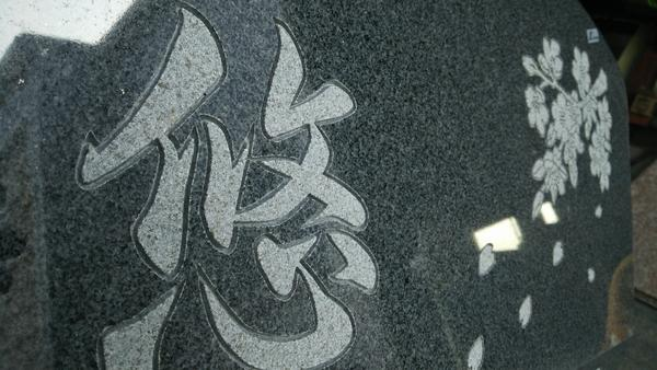 DSC_3106.JPG